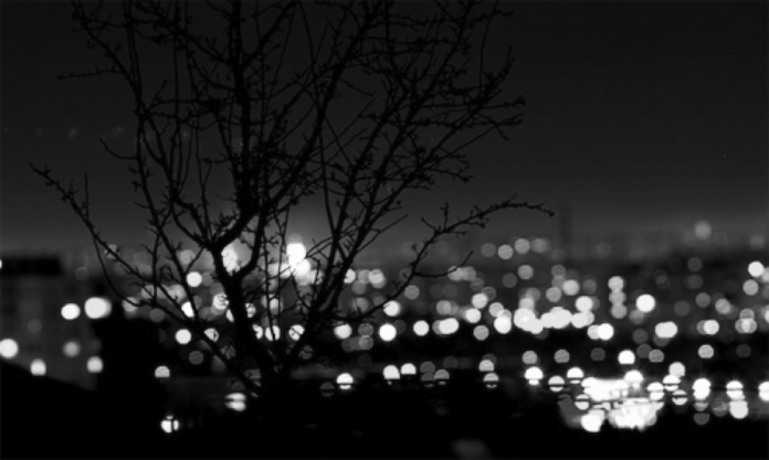 City Lights Brush